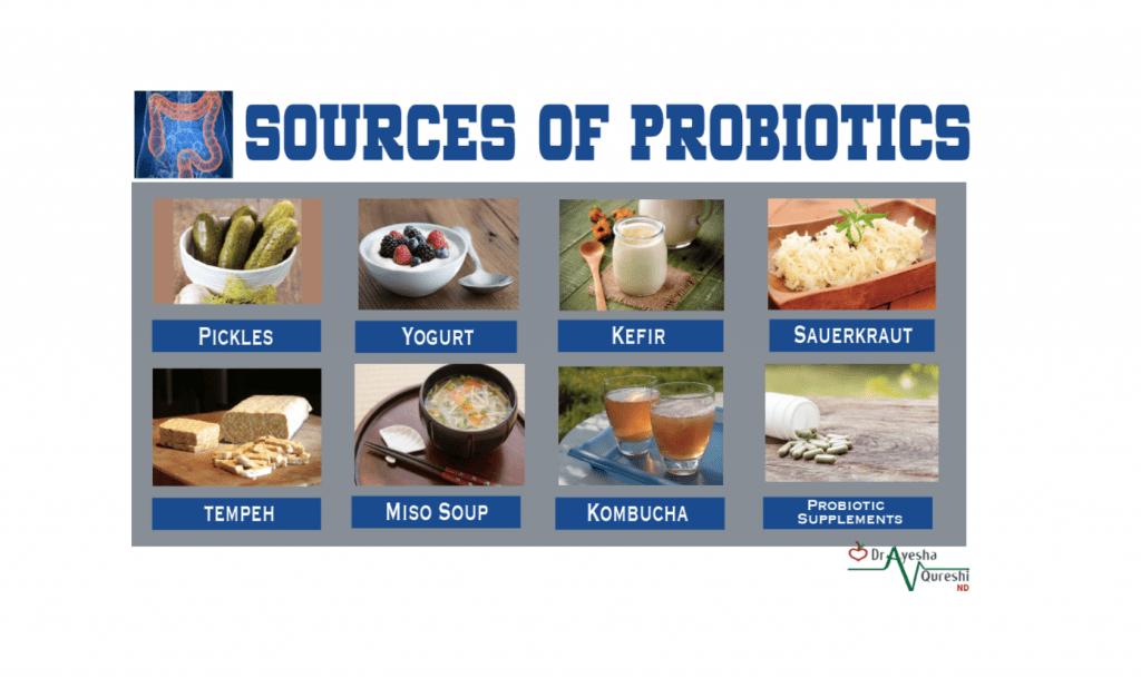 Probiotic source
