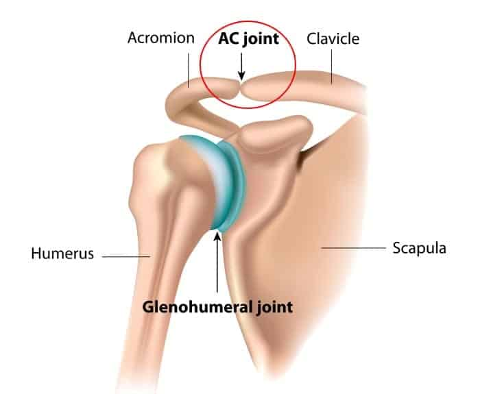 Acromioclavicular Sprain on knee ligaments and tendons